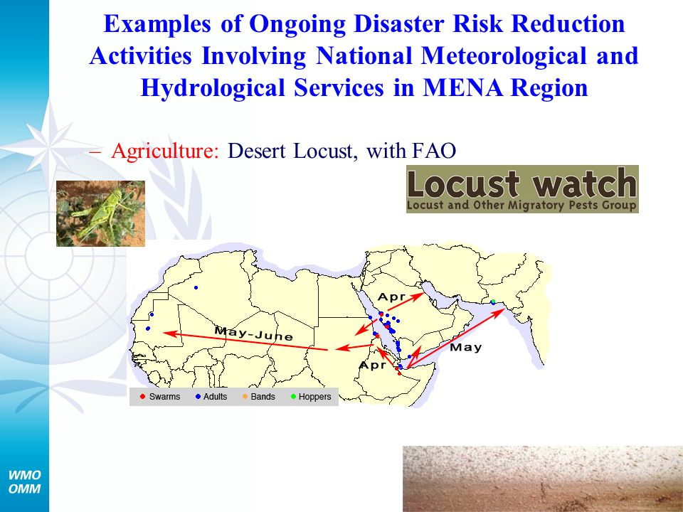 Examples of Ongoing Disaster Risk Reduction Activities Involving National Meteorological and Hydrological Services in MENA Region