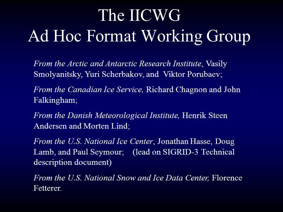 The IICWG Ad Hoc Format Working Group