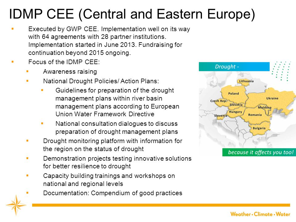 IDMP CEE (Central and Eastern Europe)