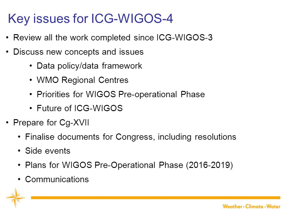 Key issues for ICG-WIGOS-4