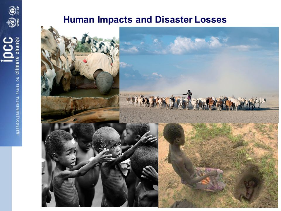 Human Impacts and Disaster Losses