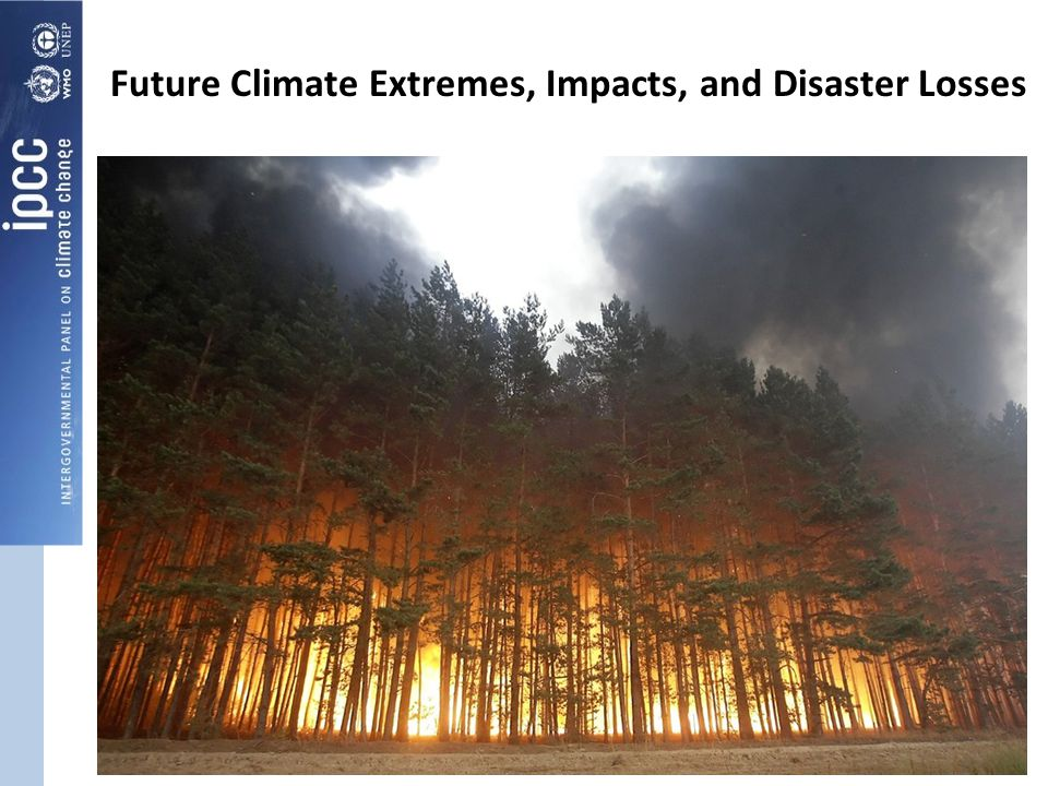 Future Climate Extremes, Impacts, and Disaster Losses