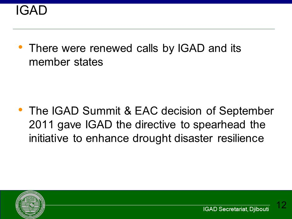 IGAD There were renewed calls by IGAD and its member states