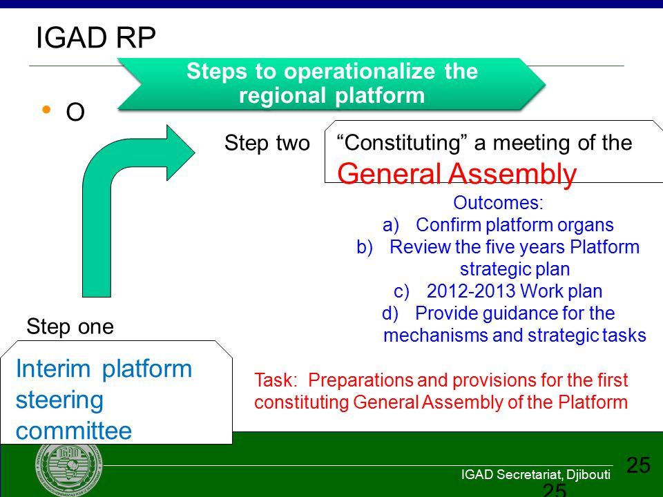 IGAD RP O Interim platform steering committee