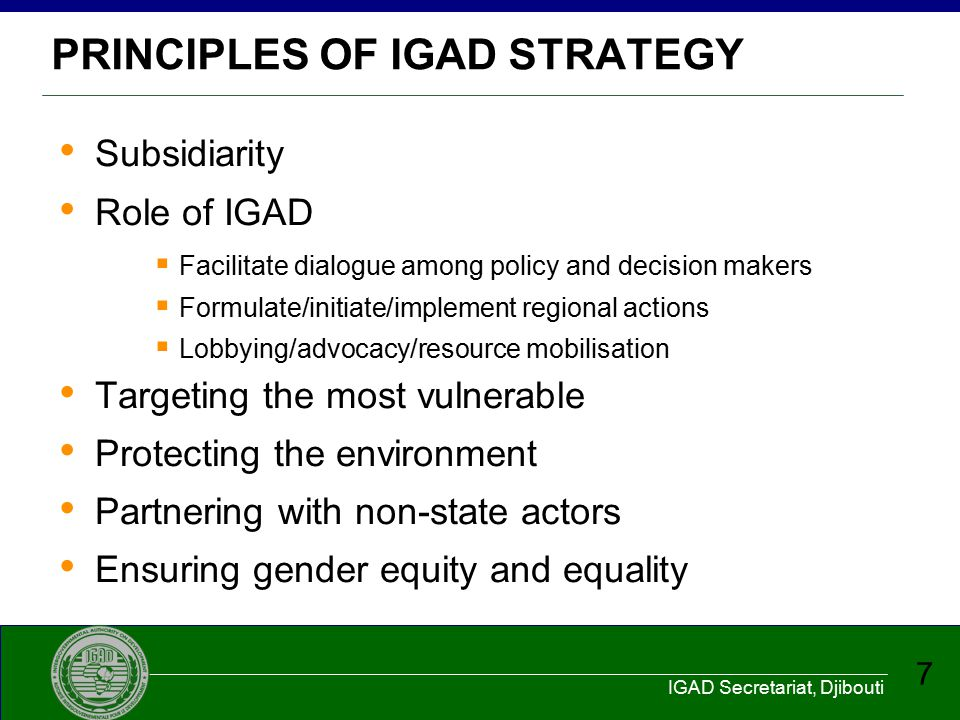 PRINCIPLES OF IGAD STRATEGY