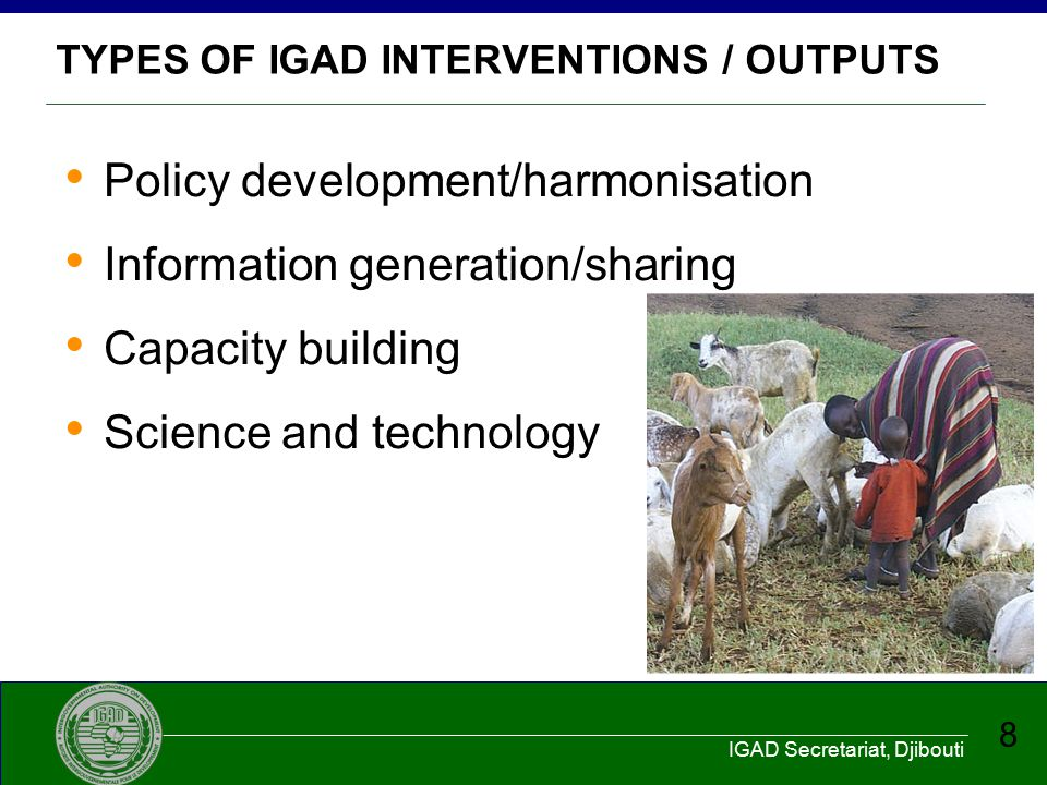TYPES OF IGAD INTERVENTIONS / OUTPUTS