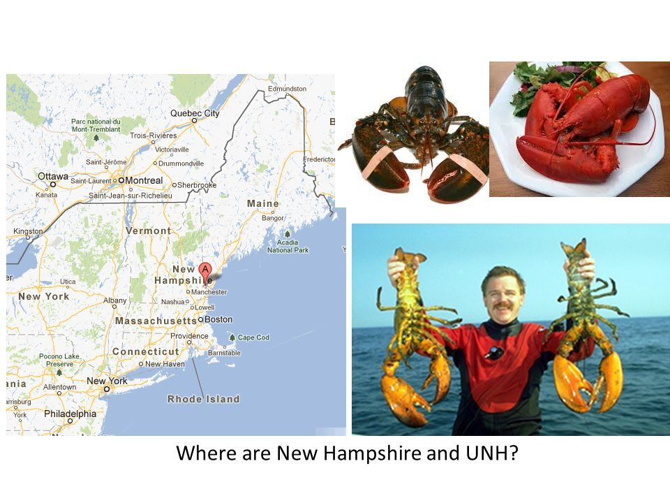 Where are New Hampshire and UNH