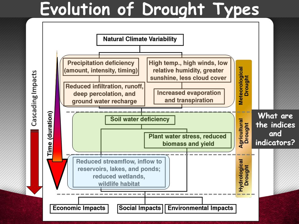 Evolution of Drought Types