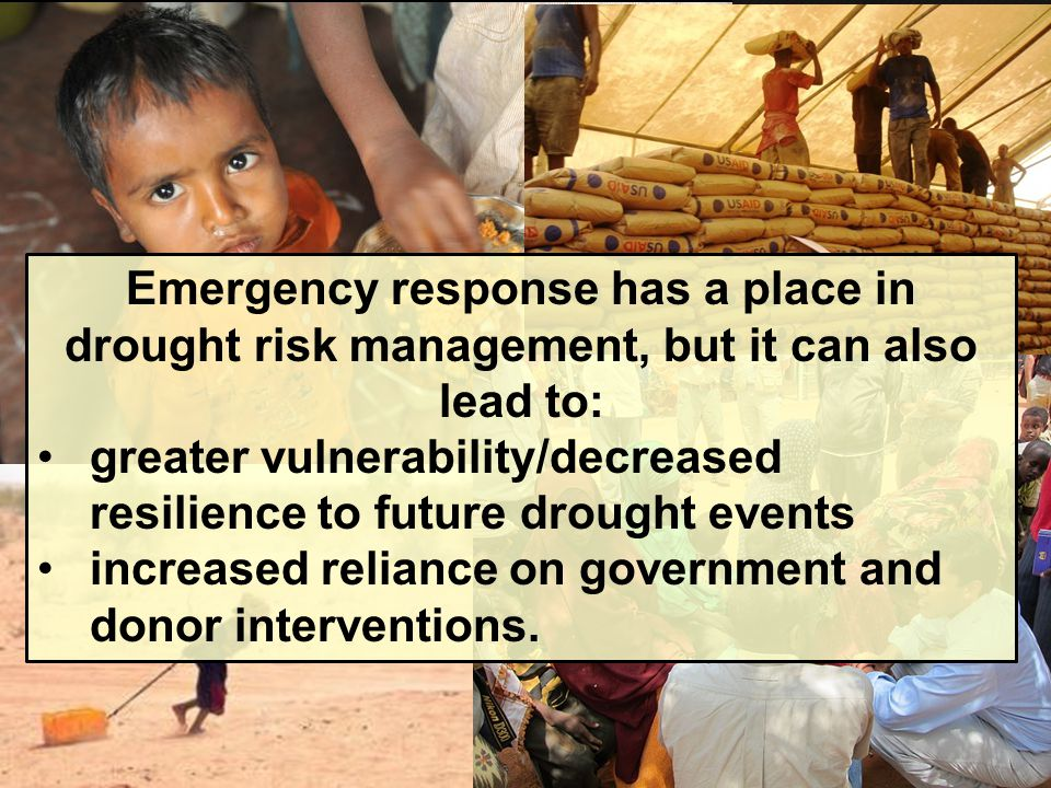 greater vulnerability/decreased resilience to future drought events