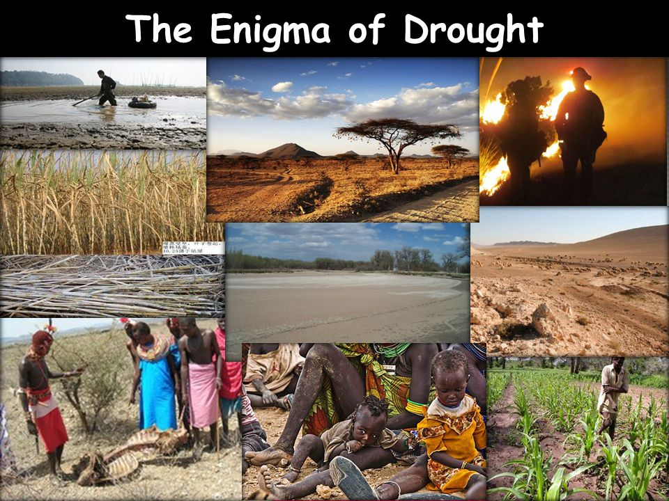 The Enigma of Drought