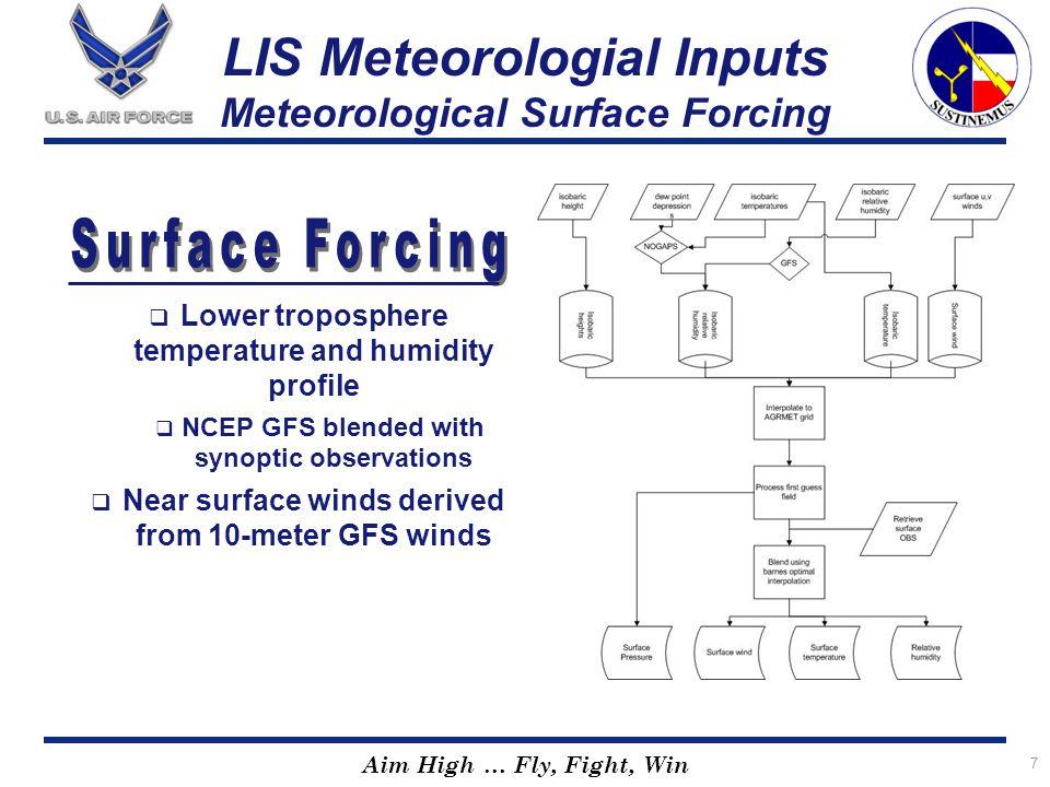 LIS Meteorologial Inputs Meteorological Surface Forcing