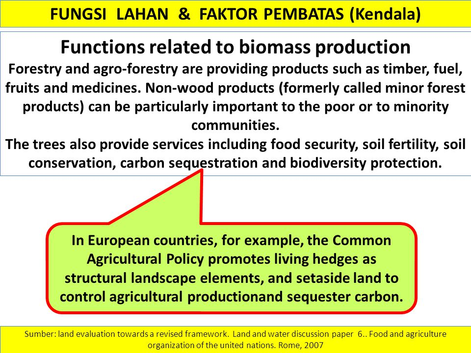 Functions related to biomass production