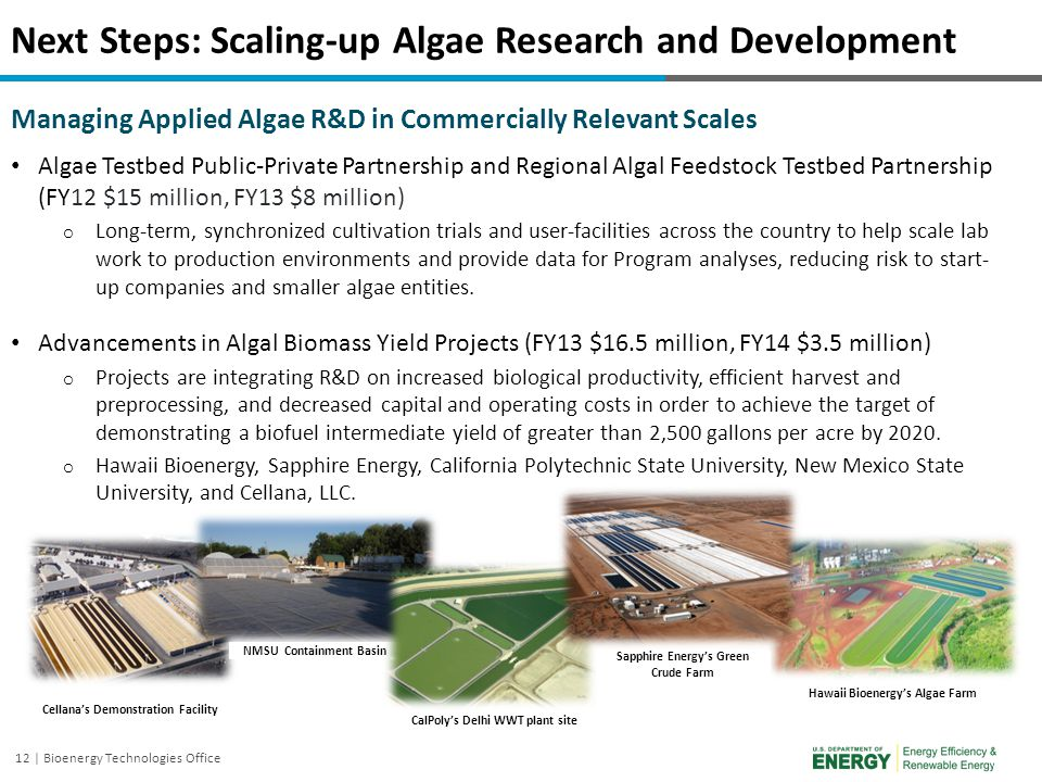 Next Steps: Scaling-up Algae Research and Development