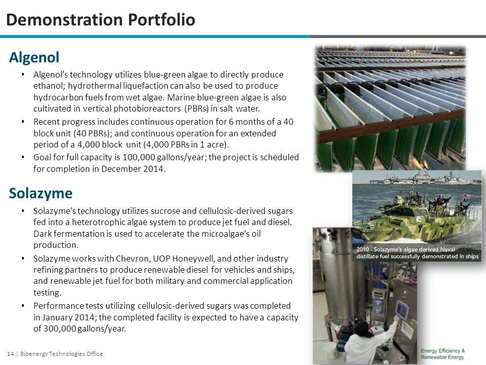 Demonstration Portfolio