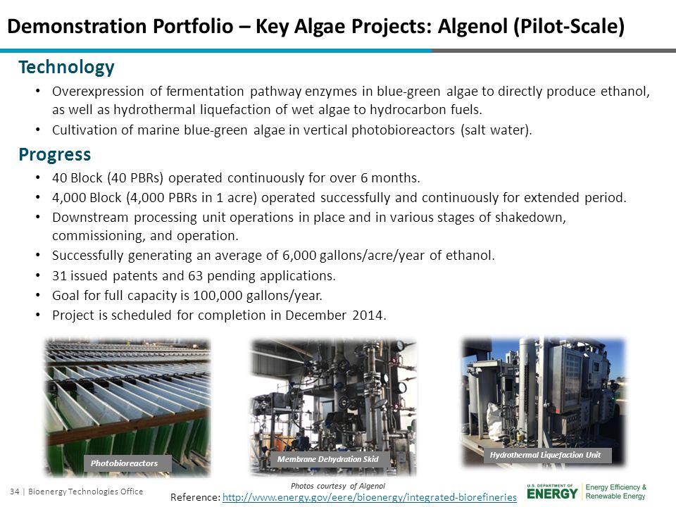 Demonstration Portfolio – Key Algae Projects: Algenol (Pilot-Scale)