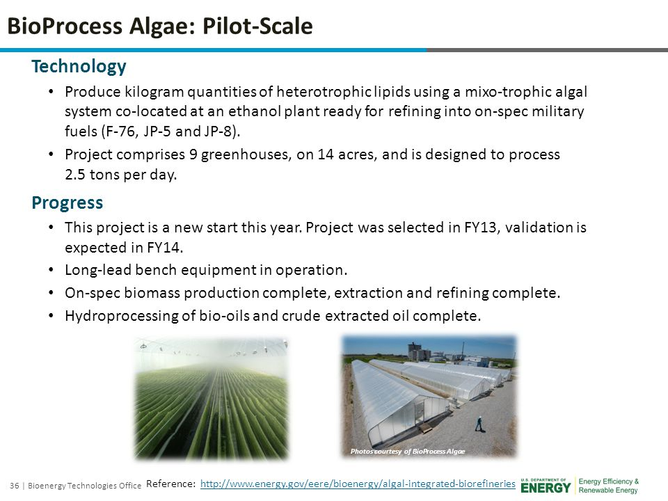 BioProcess Algae: Pilot-Scale