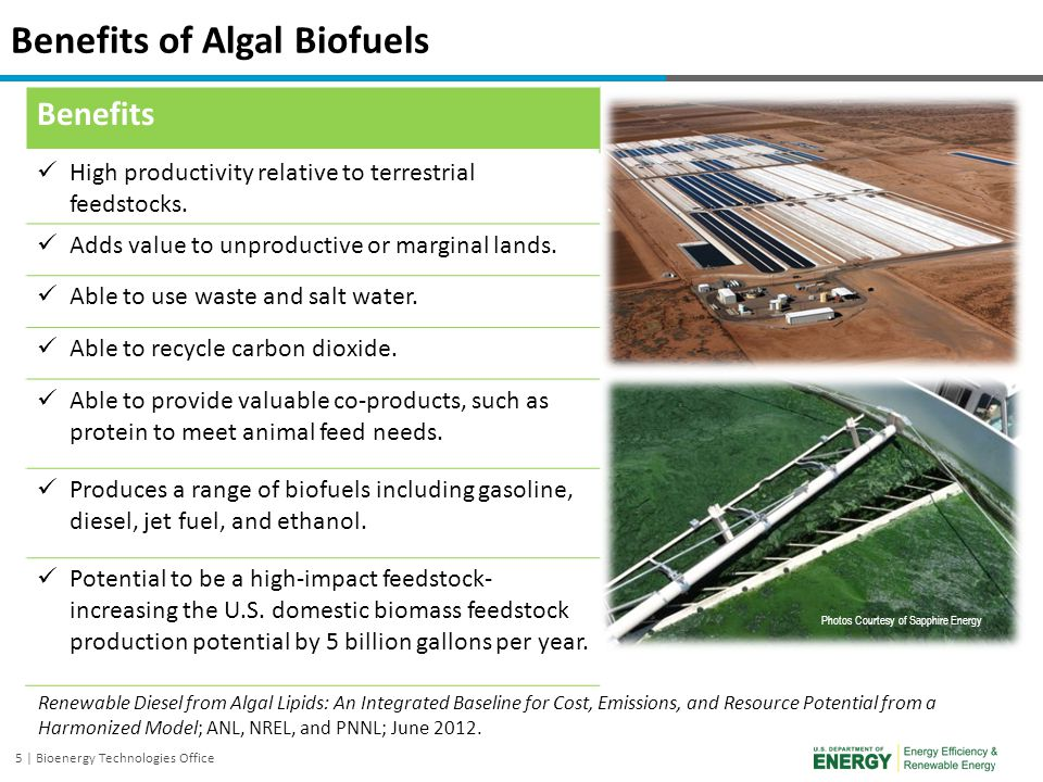 Benefits of Algal Biofuels
