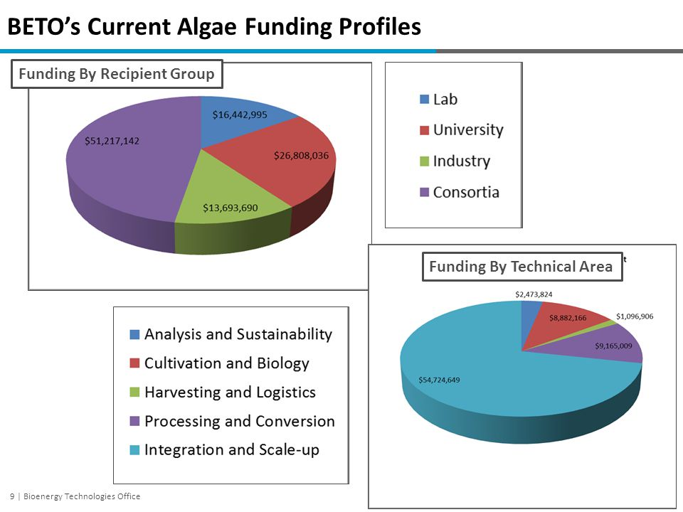 BETO's Current Algae Funding Profiles