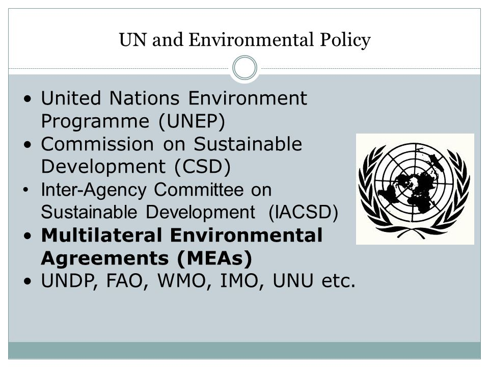 UN and Environmental Policy