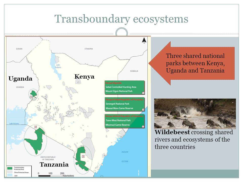 Transboundary ecosystems
