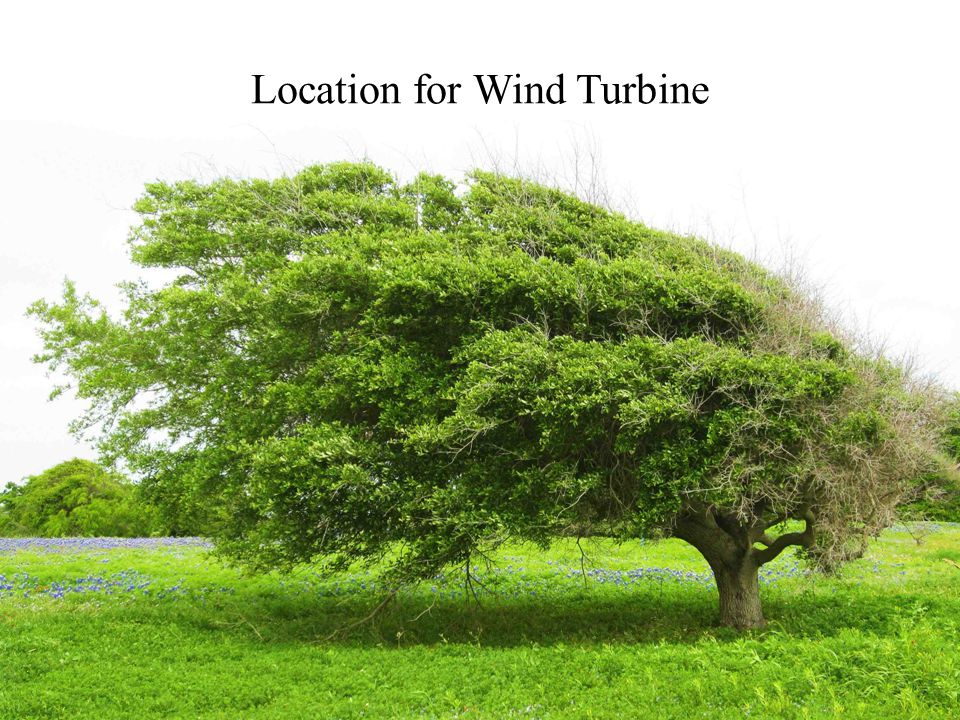 Location for Wind Turbine