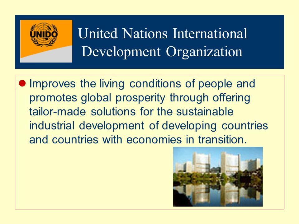 United Nations International Development Organization