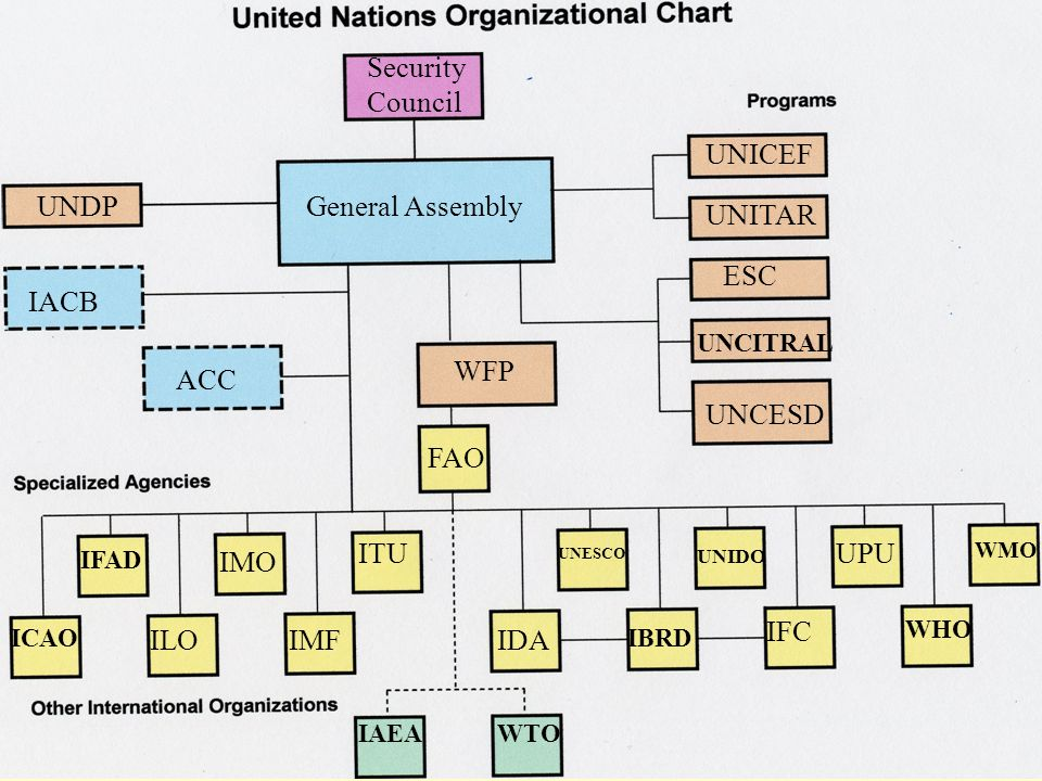 Security Council UNICEF UNDP General Assembly UNITAR ESC IACB WFP ACC