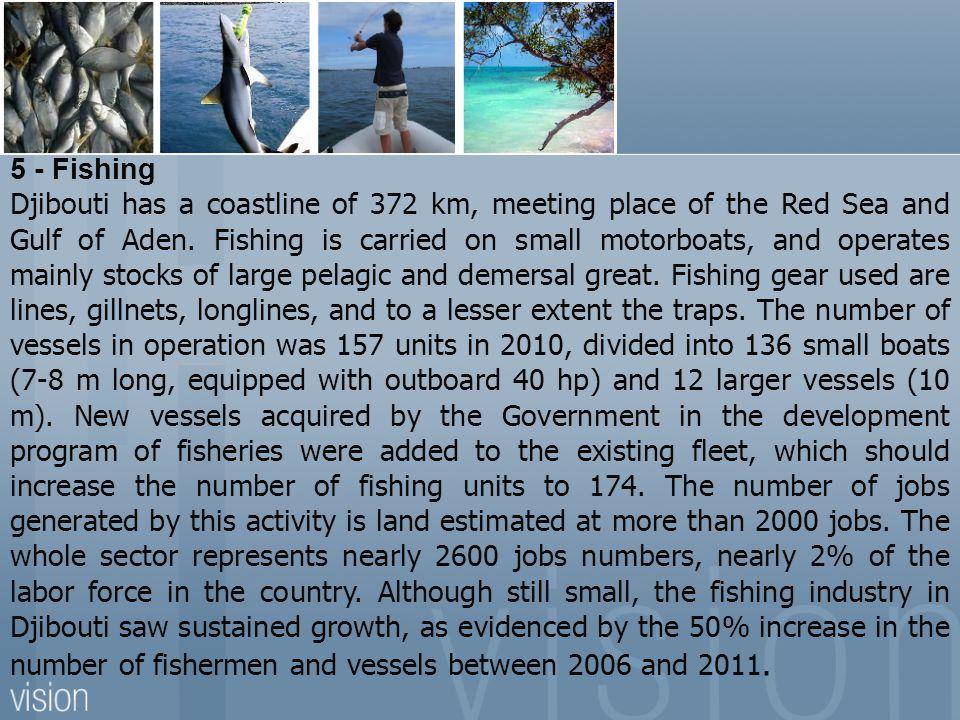 5 - Fishing