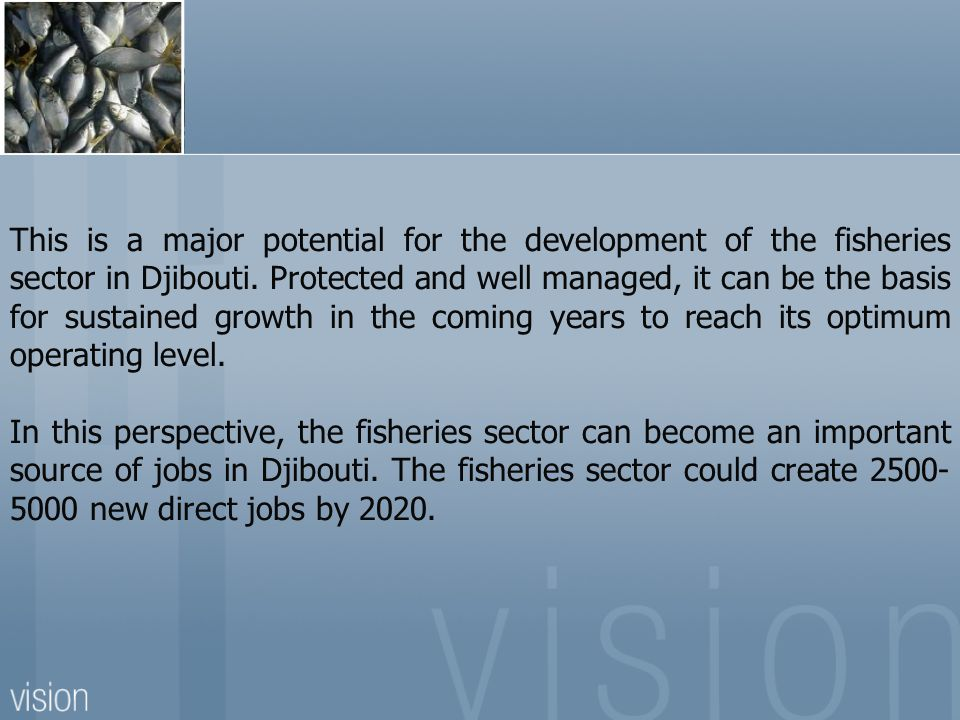 This is a major potential for the development of the fisheries sector in Djibouti. Protected and well managed, it can be the basis for sustained growth in the coming years to reach its optimum operating level.