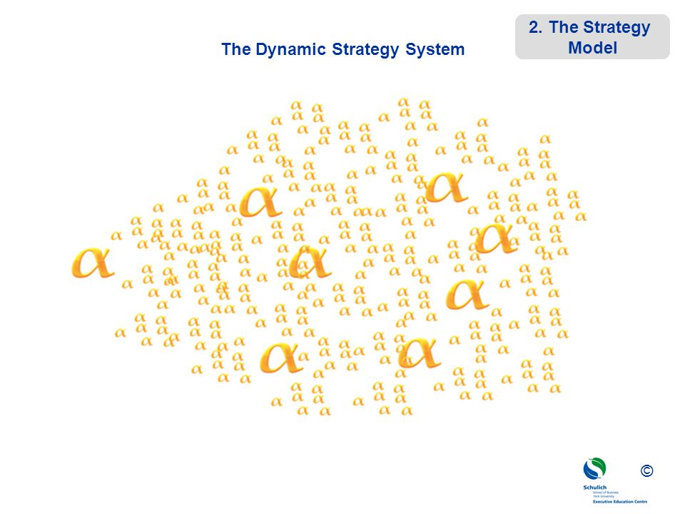 The Dynamic Strategy System