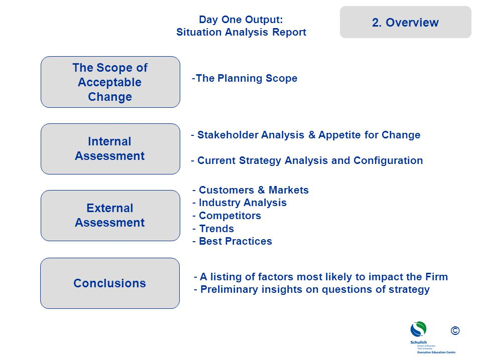 Day One Output: Situation Analysis Report