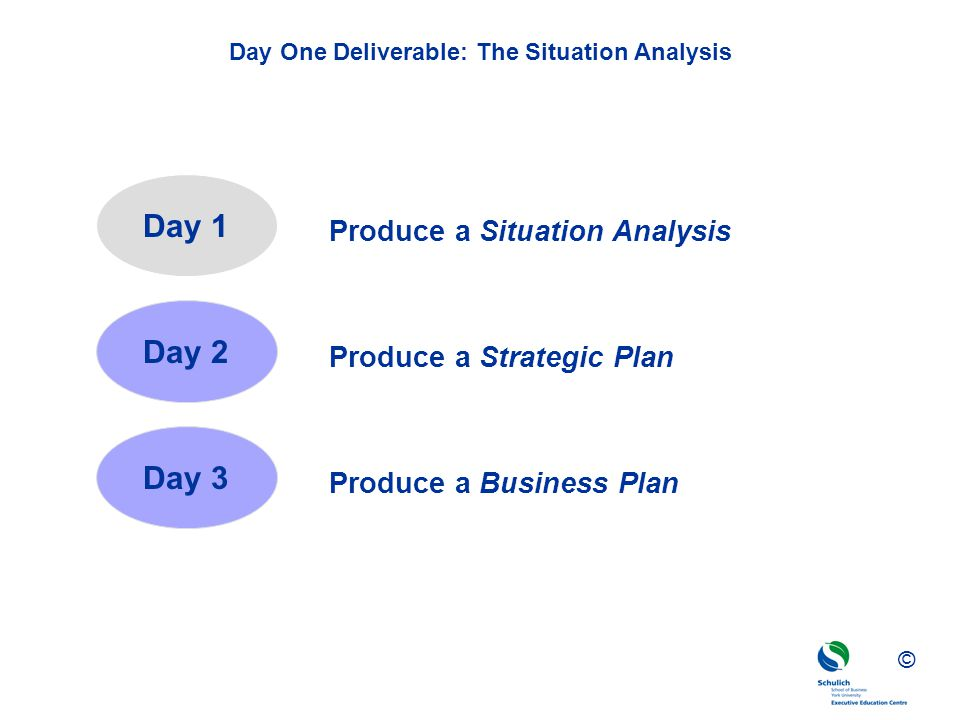 Day One Deliverable: The Situation Analysis