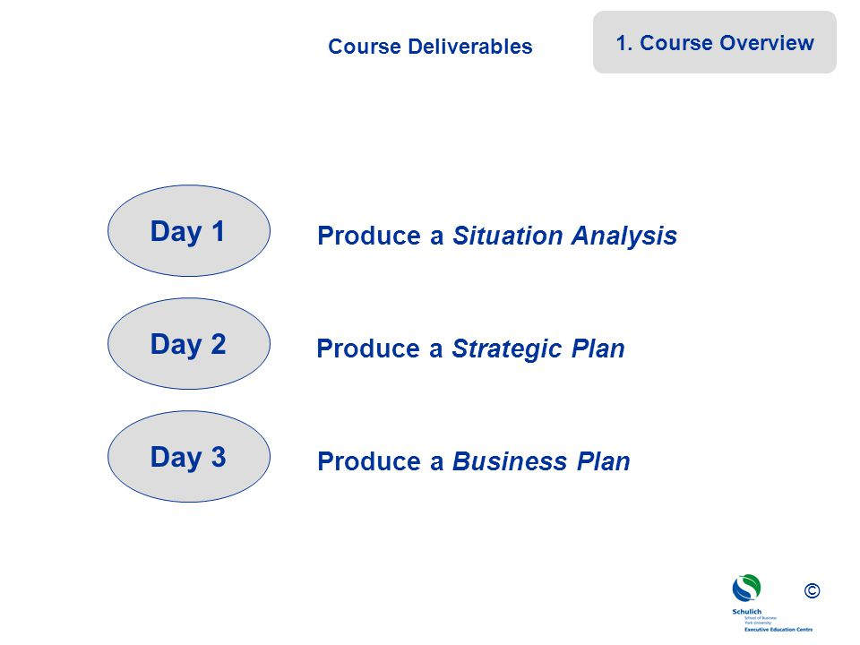 Day 1 Day 2 Day 3 Produce a Situation Analysis
