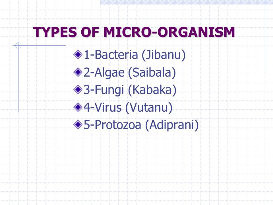 TYPES OF MICRO-ORGANISM