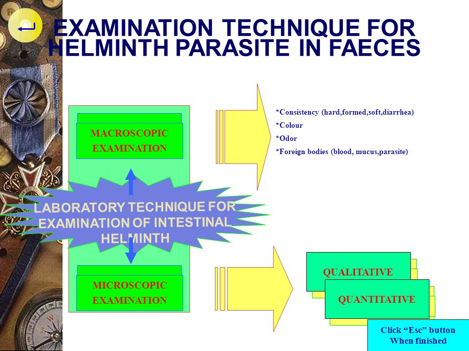 EXAMINATION TECHNIQUE FOR HELMINTH PARASITE IN FAECES