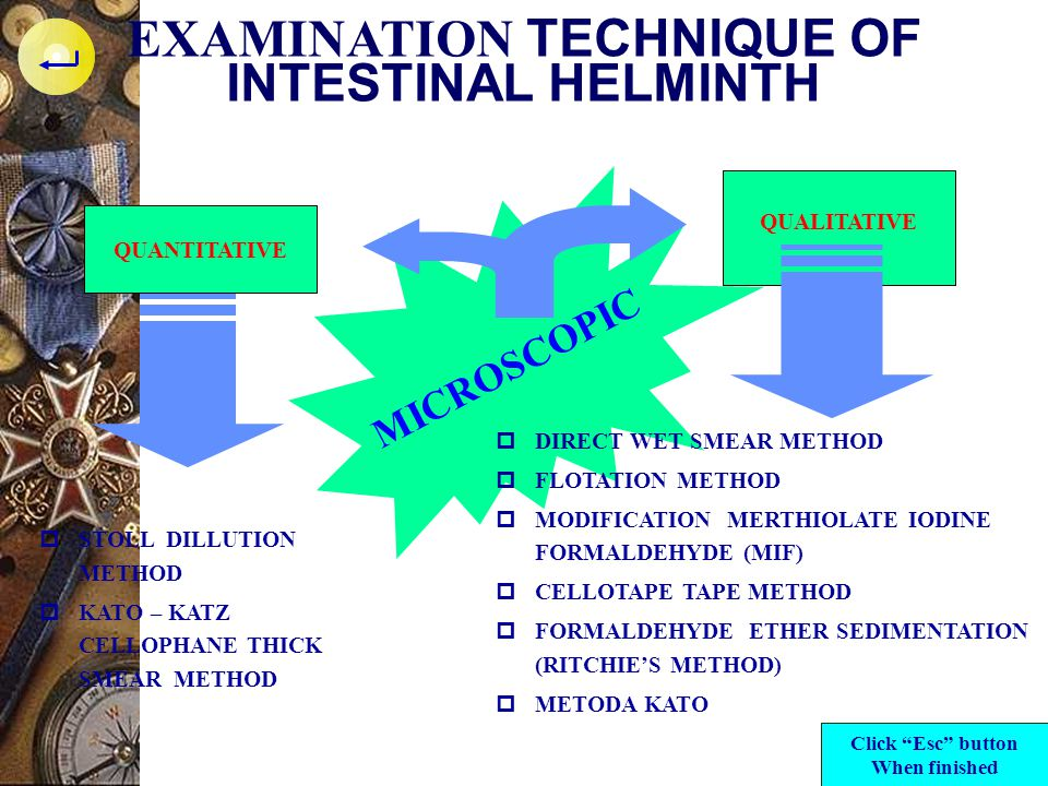 EXAMINATION TECHNIQUE OF INTESTINAL HELMINTH