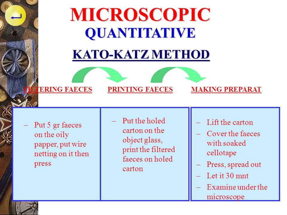 MICROSCOPIC QUANTITATIVE KATO-KATZ METHOD
