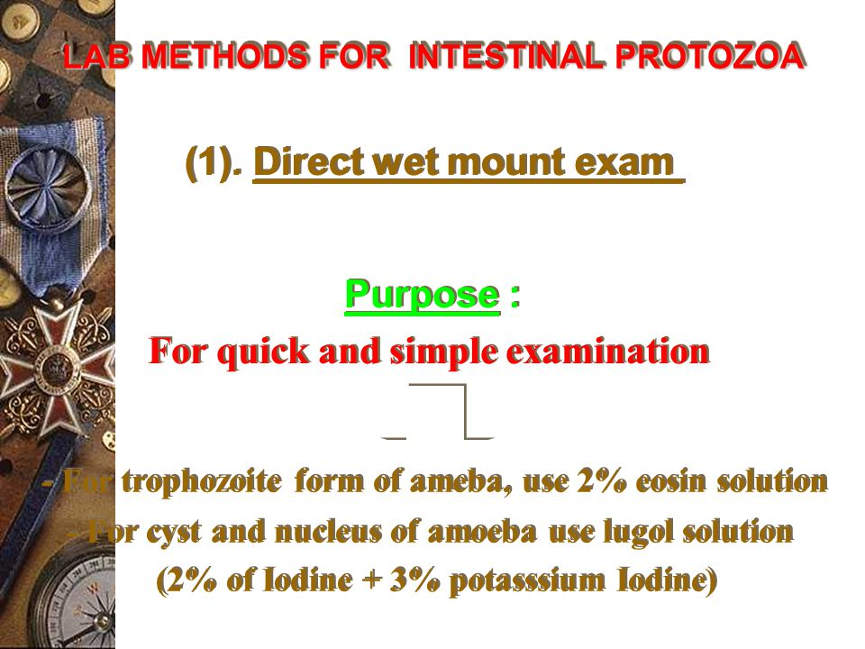 (1). Direct wet mount exam