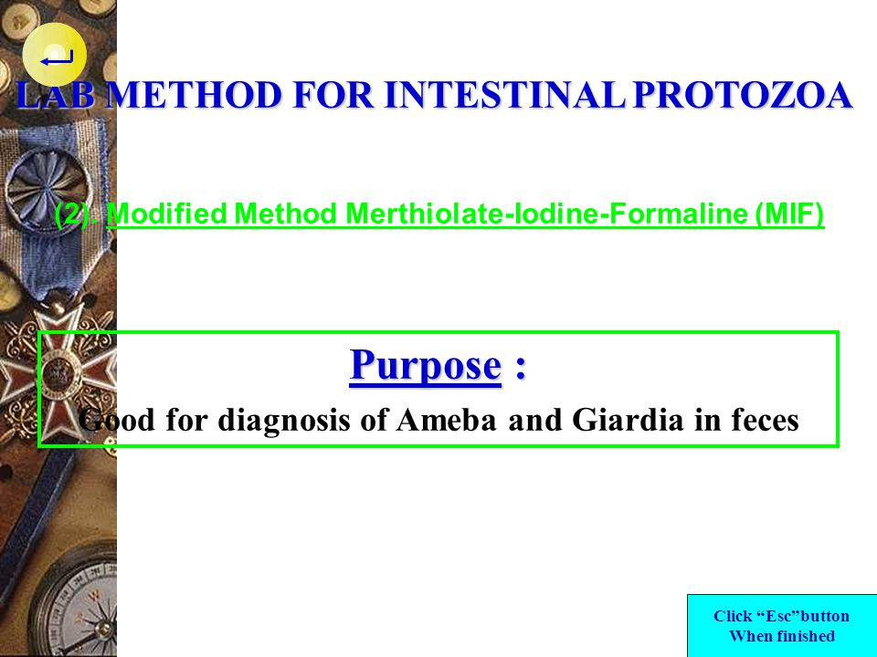 Purpose : LAB METHOD FOR INTESTINAL PROTOZOA