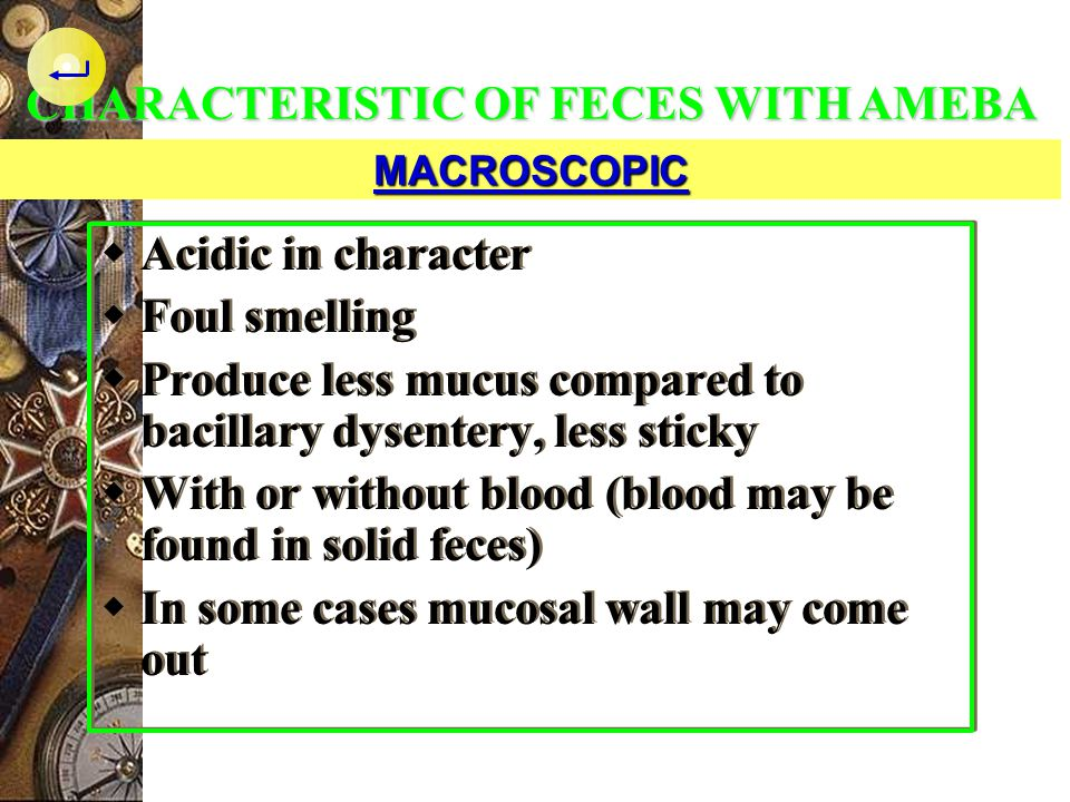 CHARACTERISTIC OF FECES WITH AMEBA