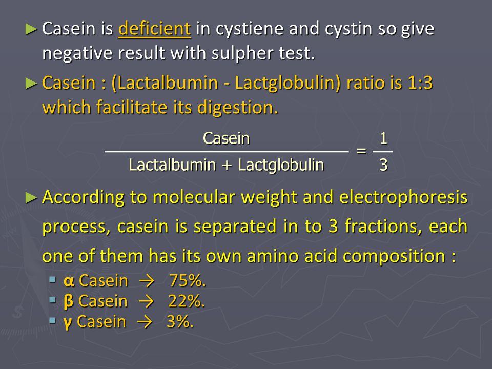 Lactalbumin + Lactglobulin