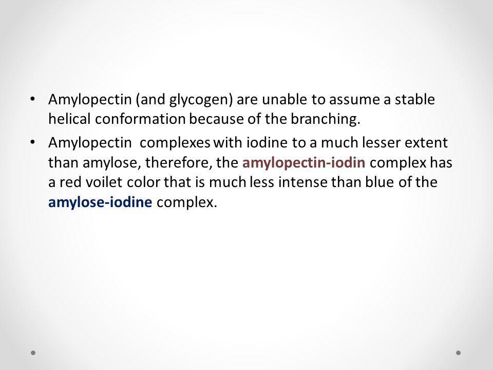 Amylopectin (and glycogen) are unable to assume a stable helical conformation because of the branching.