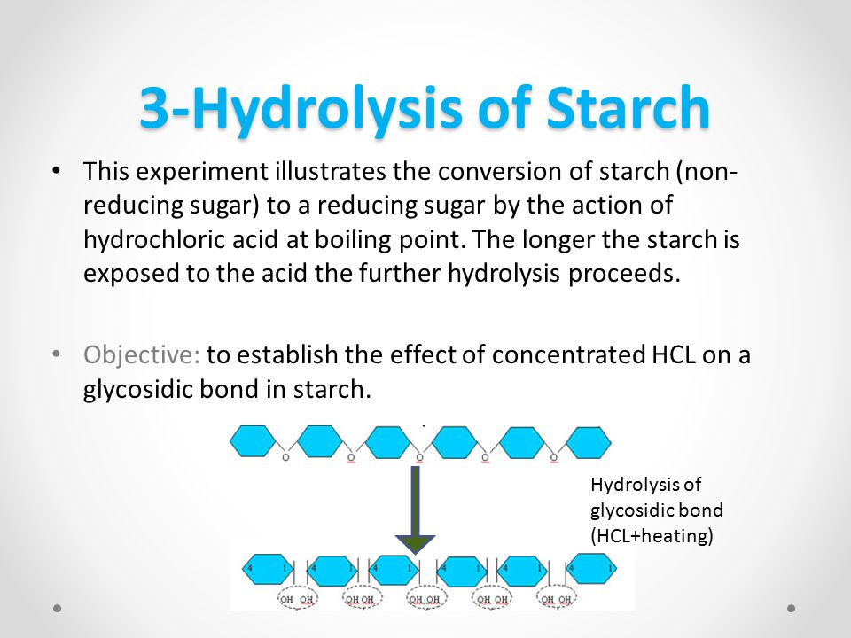 3-Hydrolysis of Starch