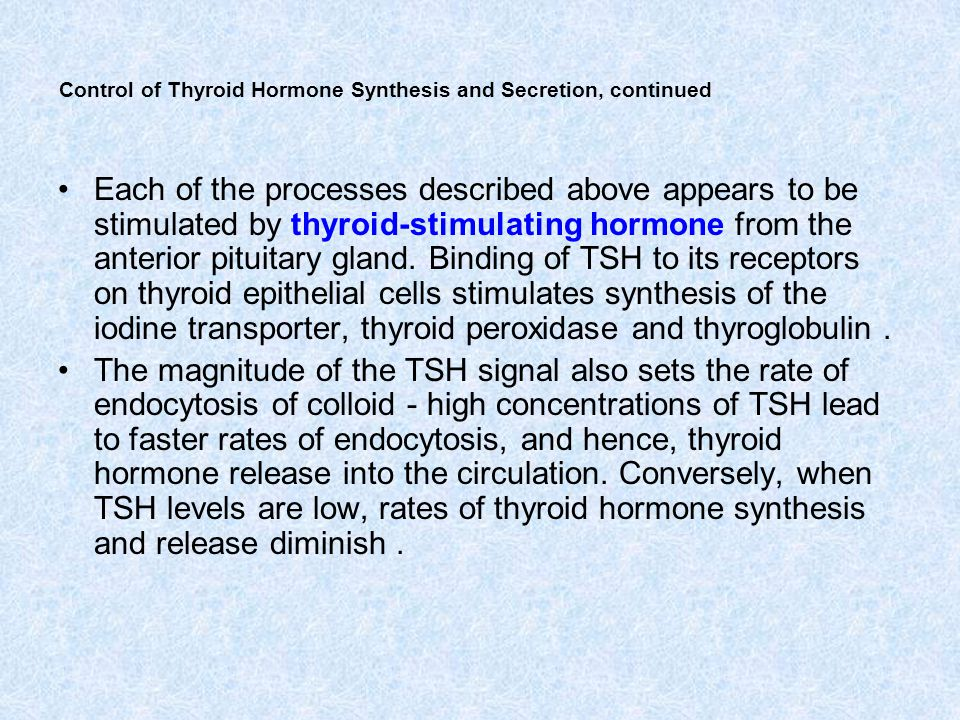 Control of Thyroid Hormone Synthesis and Secretion, continued