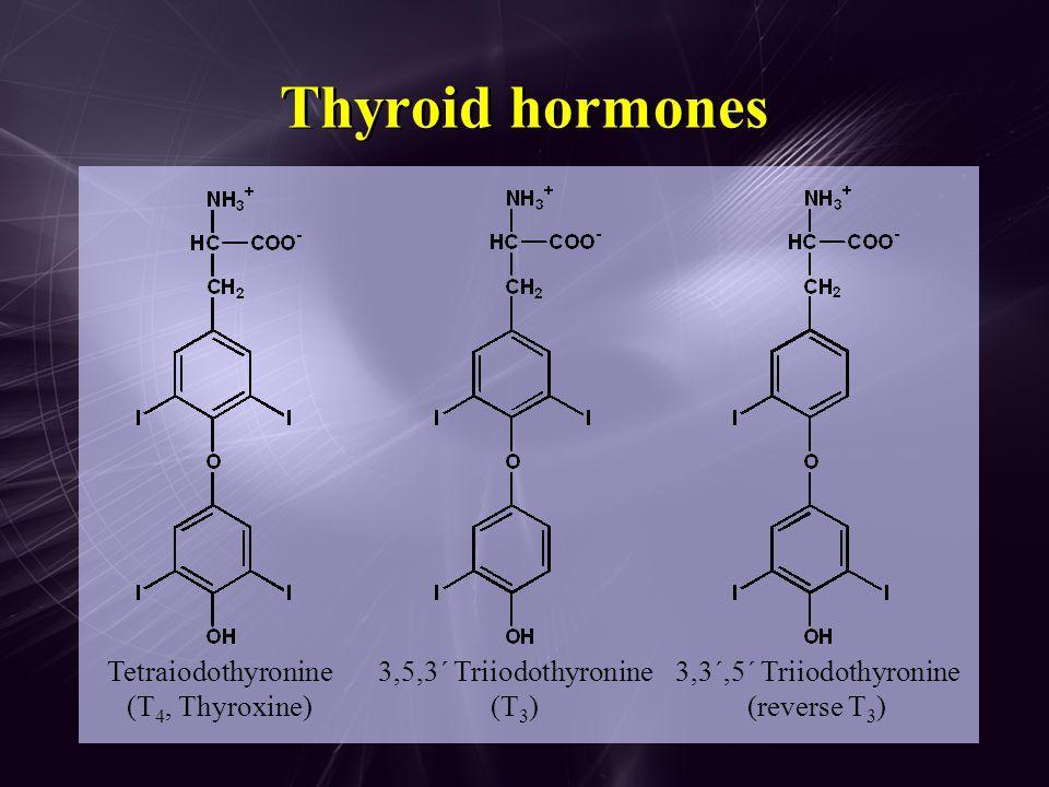 Thyroid hormones Tetraiodothyronine (T4, Thyroxine)