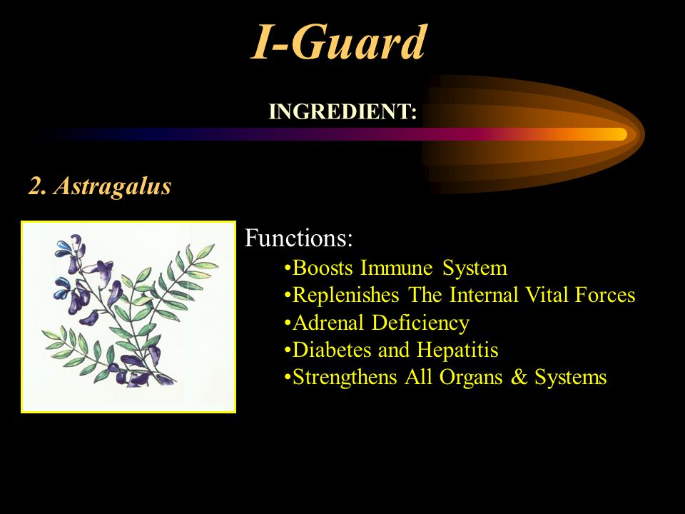 I-Guard 2. Astragalus Functions: INGREDIENT: Boosts Immune System