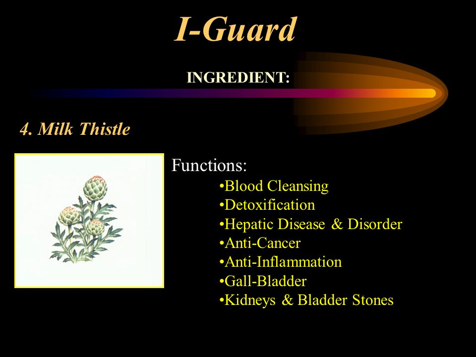 I-Guard 4. Milk Thistle Functions: INGREDIENT: Blood Cleansing