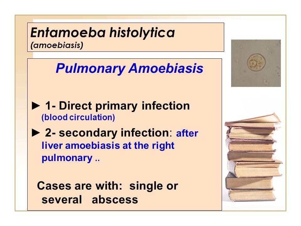 Entamoeba histolytica (amoebiasis)
