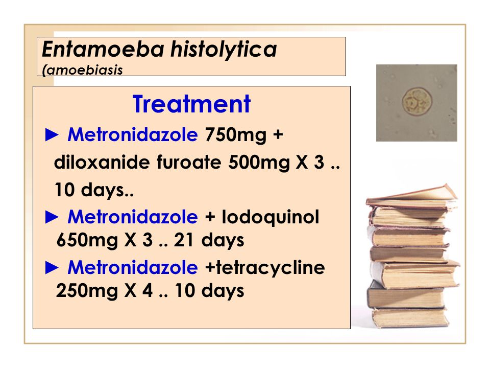 Entamoeba histolytica (amoebiasis