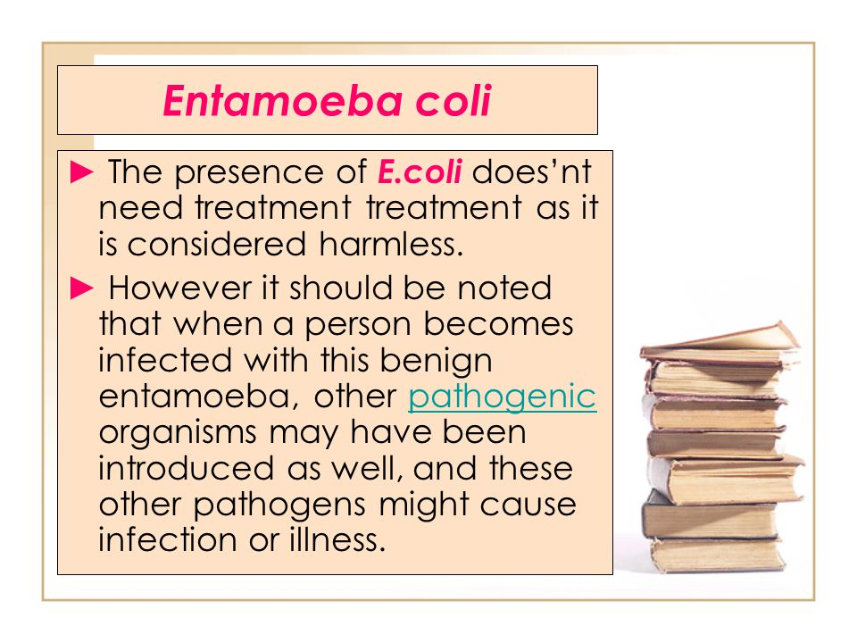 Entamoeba coli ► The presence of E.coli does'nt need treatment treatment as it is considered harmless.